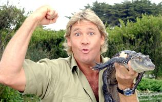 PIC: Friday's Google Doodle will be a tribute to the one-and-only Steve Irwin