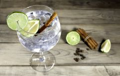 Kerry gin makers pick up the top prize at the World Gin Awards