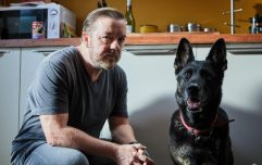 WATCH: Netflix's new Ricky Gervais series is the most Ricky Gervais thing imaginable