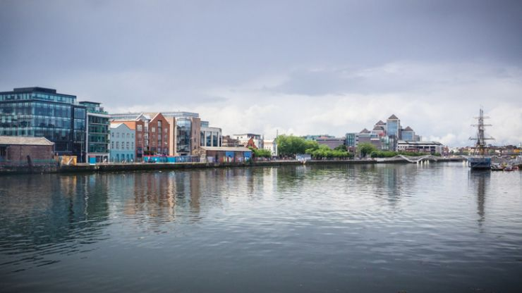 Whale spotted in the River Liffey has died
