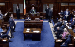 Dáil button-bashers behaving like children who can't be trusted with the house keys