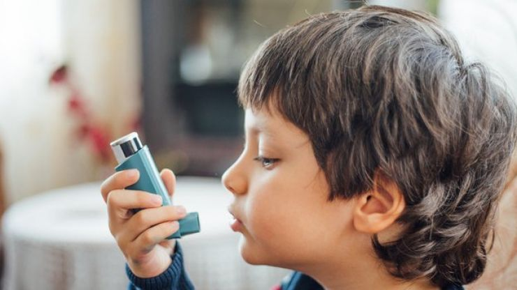 Some asthma inhalers as bad for environment as eating meat, says study