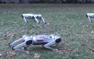 WATCH: Footage of MIT's robotic 'Mini Cheetahs' proves that the end is nigh
