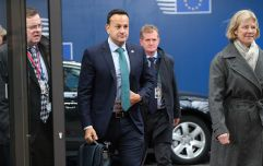 Irish Refugee Council condemns Leo Varadkar's remarks about Georgians and Albanians