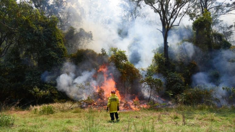 Australian firefighter accused of deliberately starting bushfires