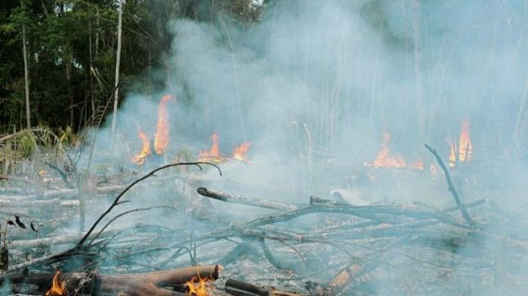 Brazil's President seems to accuse Leonardo DiCaprio of starting the Amazon fires