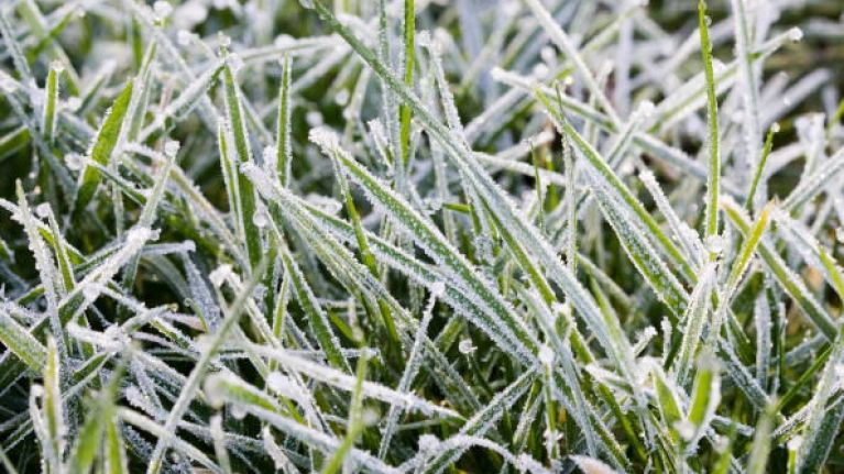 Wrap up warm tonight, as Met Éireann predicts temperatures to drop to -2