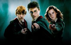 There isn't a single Harry Potter film being shown on free-to-air TV over the Christmas season