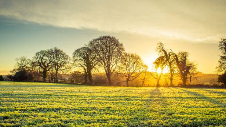 Met Éireann predicts the weather will get 'drier and milder' leading into the New Year