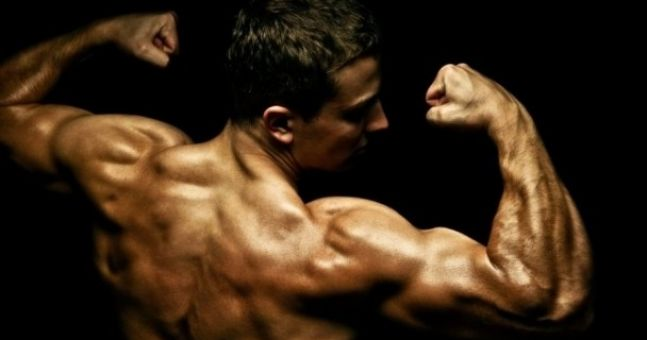 Five muscle myths busted