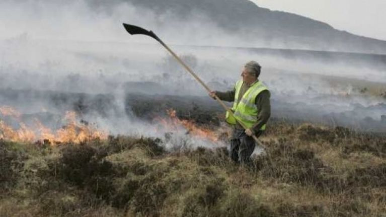photo gallery gorse fires rip across ireland joe is the voice of