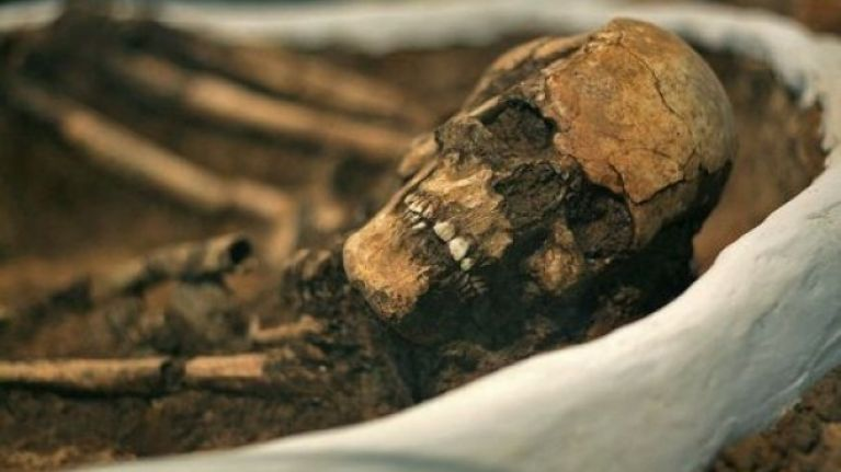 Ancient skeletons discovered in north Dublin