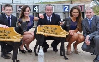 Fancy some top quality greyhound racing on Saturday? It's free...