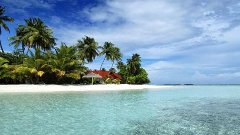 Booking your Honeymoon: McDermott Travel is the way to go   JOE is