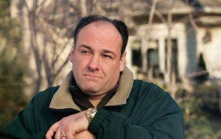 The Sopranos star James Gandolfini dies aged 51