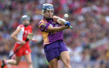 The most famous camogie water carrier in Ireland and Ger Loughnane has a fierce dig at John Mullane