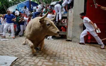 Irishman amongst those injured at the running of the bulls in Pamplona today