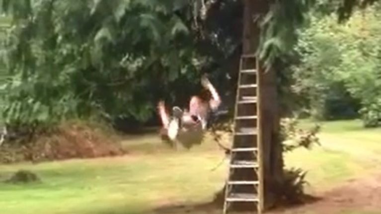 Video: Guy falls off zipline; roars out with hilarious cries of pain afterwards