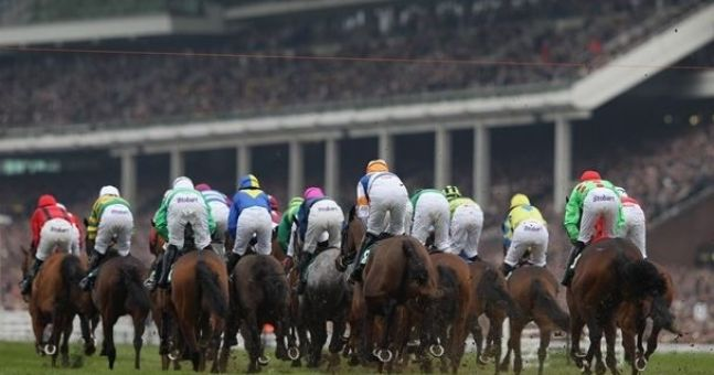 Why theTote.com is your best friend for Cheltenham betting