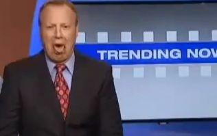 Video: Feline sick? News anchor accidentally eats cat vomit on live TV