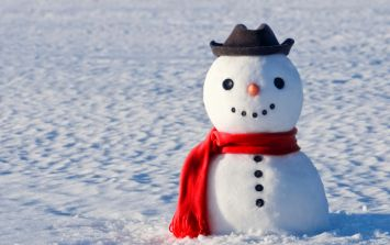 Picture: The first snowman of the season in Ireland has arrived