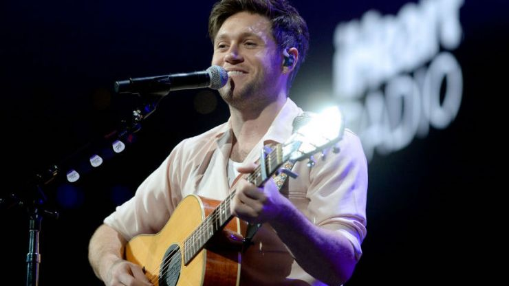 Niall Horan donates €100k to ALONE charity