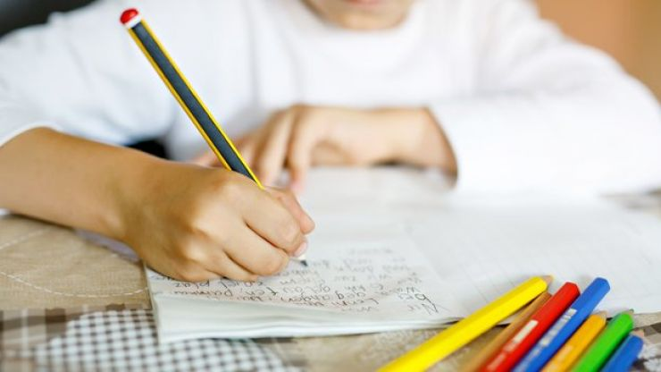 Green Party proposes removing homework in primary schools if elected