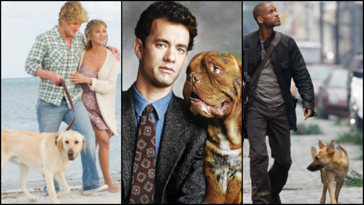 QUIZ: We give you the movie title, you tell us the dog breed in it