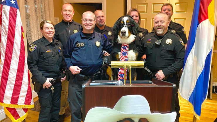 A very good dog has been voted honorary mayor of a town in Colorado