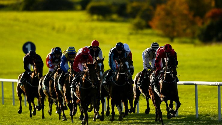 Racing club membership the ideal Christmas present for any dreamer