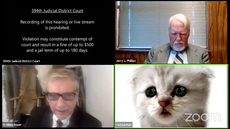 """""""I am not a cat"""" - Texas lawyer turns on kitten filter during court Zoom, and can't switch it off"""