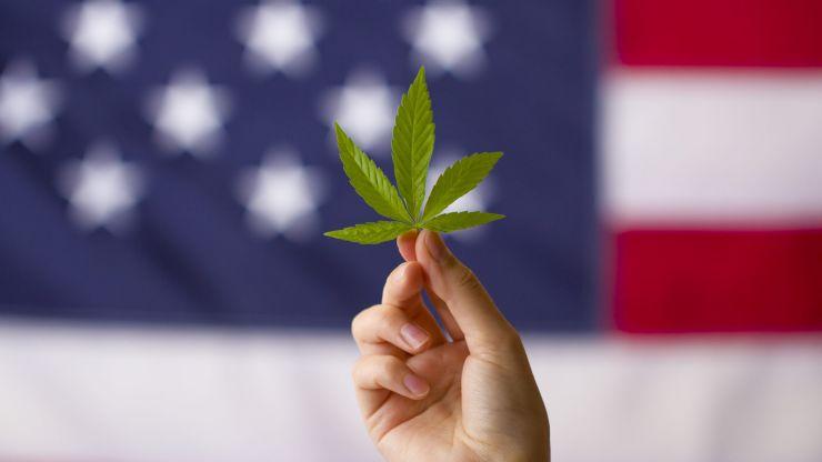 New York state agrees to legalise use of recreational marijuana