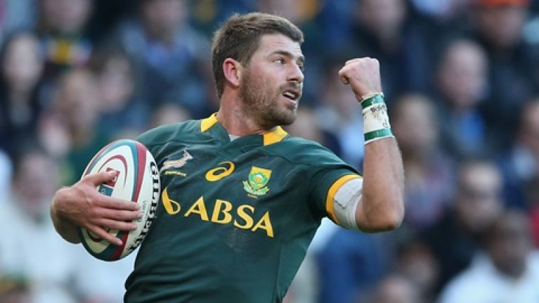Rob Kearney and Ireland beware: South Africa's 'pest' Willie le Roux needs controlling
