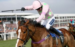 Ruby Walsh undecided over Hurricane Fly or Faugheen for Champion Hurdle. Not a bad problem to have