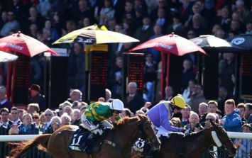 Our three to watch on the final day of Punchestown