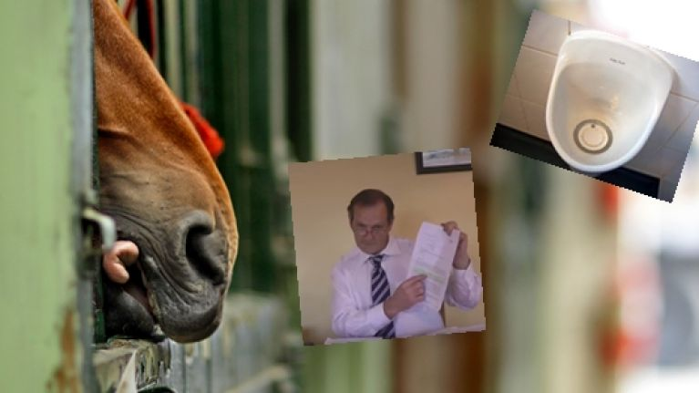 Irish trainer fined after his horse failed a doping test because he peed in its bed