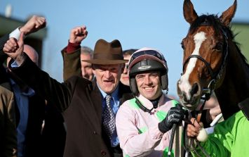 Willie Mullins will be sending his biggest stars to the Punchestown festival