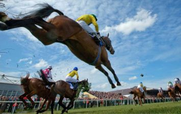 TIPS: Hayley O'Connor marks your card for the opening day of Punchestown Festival
