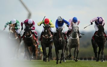 Top tips for day three at Punchestown courtesy of Hayley O'Connor from Ladbrokes