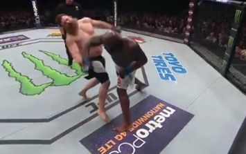 VIDEO: Can somebody please explain to us how Roy Nelson stayed conscious after this right hand?