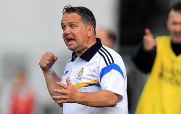 Come back soon Davy Fitz - you intense, contradictory, contrary, brilliant hurling manager