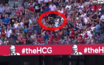 VIDEO: Supporter defies gravity and other fans to spectacularly catch a stray ball