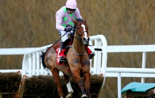 Well-oiled Faugheen 'The Machine' underlines class in sensational Champion Hurdle victory
