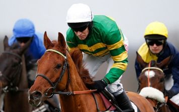 Your top tips for Day Two at Cheltenham courtesy of Hayley O'Connor of Ladbrokes
