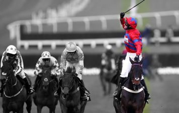 The world reacts with tear-filled joy to Sprinter Sacre's remarkable victory
