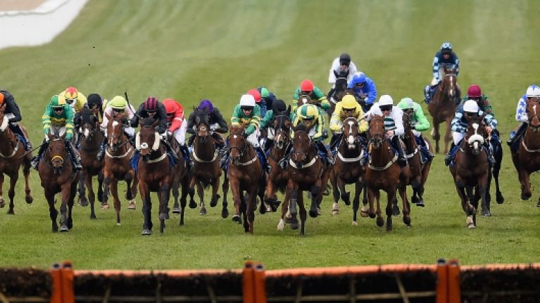 Your top tips for St Patrick's Day at Cheltenham courtesy of Hayley O'Connor of Ladbrokes