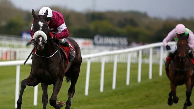 Your tips for the final day at Cheltenham courtesy of Hayley O'Connor of Ladbrokes