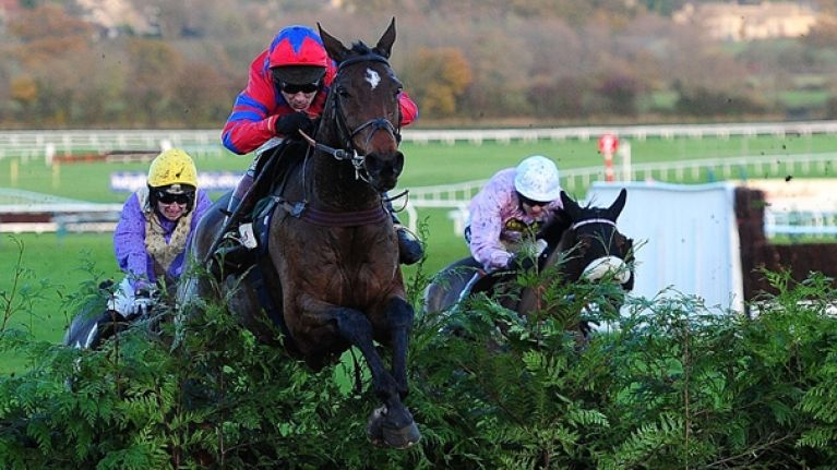 Cheltenham punter walks away from £1.7m shot, turns out to be best cash out ever
