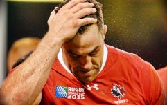 """""""Nobody needs to die playing sport"""" - Jamie Cudmore on the 'double digit' concussions in his rugby career"""