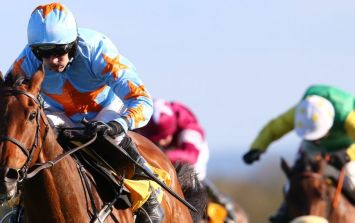 Three horses to back on the opening day of Punchestown Festival